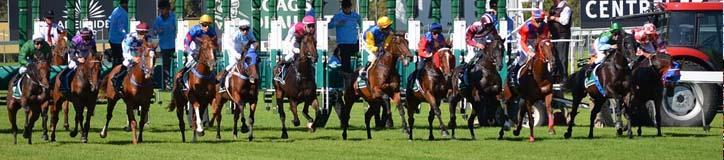 Horse Betting Online | Online Racebook | Bet Horses Online