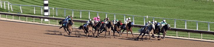 Best Horse Racing Odds | Horse Betting Betting Odds & Lines