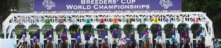 Bet On The Breeders Cup   Bet The Breeders Cup Online
