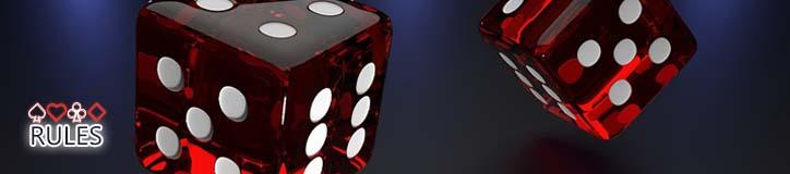 ONLINE CASINO RULES