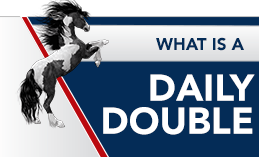 WHAT IS A DAILY DOUBLE?