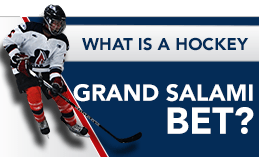 WHAT IS A HOCKEY GRAND SALAMI BET?