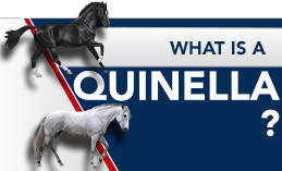 WHAT IS A QUINELLA ?