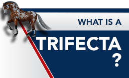 WHAT IS A TRIFECTA?