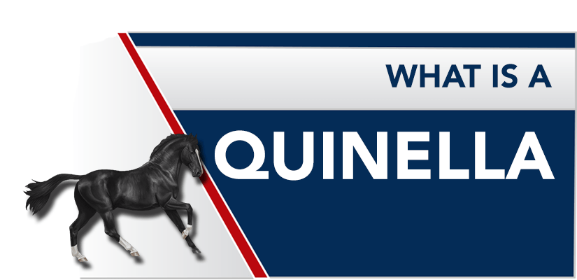 What is a Quinella? How to Bet a Quinella