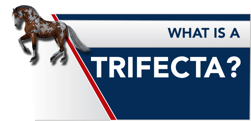 What is a Trifecta Bet? Trifecta Betting Explained