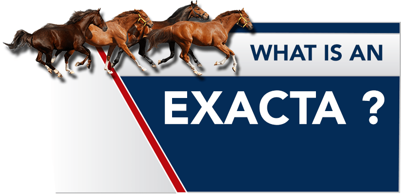 What is an Exacta Bet? Exacta Betting Explained